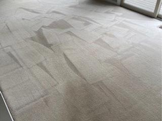 Cavalier Carpet Cleaning   cleaning dirty carpet
