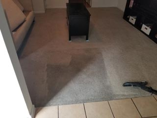 Cavalier Carpet Cleaning   clearning dirty carpets