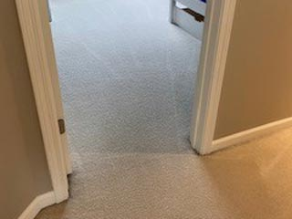 Cavalier Carpet Cleaning   clean carpet after